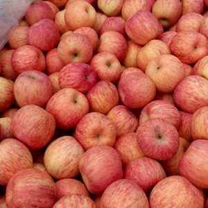 山东大型的苹果产区,常年对外供应:水晶红富士苹果,红星苹...