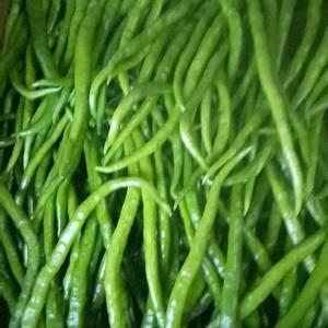 陕西辣椒现已大量上市,品种有:线椒,螺丝椒,泡椒需要的朋...