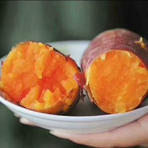 西瓜红红薯(优质薯品种优),产品位于河南省黄河故道著名产...