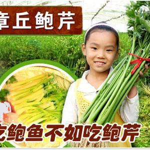 章丘家利果蔬种植专业合作社注册成立于2012年,是一家种...