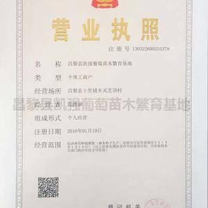 河北省昌黎县凯强葡萄苗木繁育基地。2018年秋一2019...