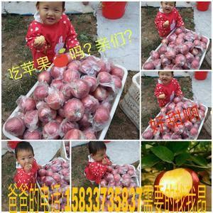 梅庄国红苹果