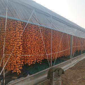 出售大量山楂片,柿饼,批发零售,15954427778
