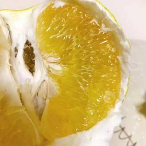 台湾甜葡萄柚(黄金西柚)吃法介绍 葡萄柚膜会有点甘苦的...