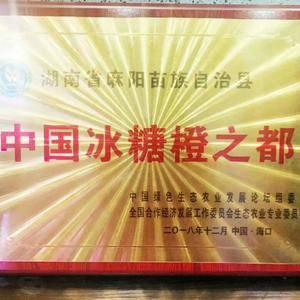 麻阳长寿之果,中国冰糖橙之都