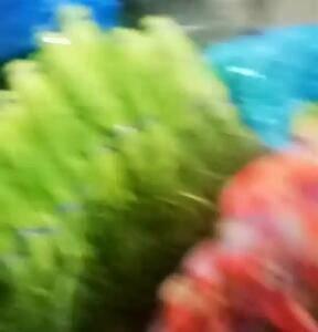 洋葱,2毛,大蒜,8毛到1块3,蒜苔1块6,大量供应,大...