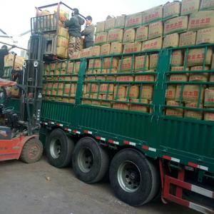 山东潍坊优质冷库荷兰十五,精品超市大量供应。欢迎各地客商...
