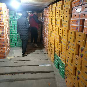 礼盒巨峰葡萄大量供应,有需要的客户联系137397016...