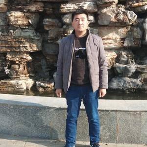山东省淄博市高青县大量供应优质菠菜,量大,质量好,欢迎南...