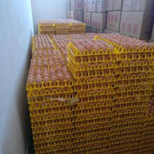 鲜鸡蛋,南水北调源头优质水源产高品质鸡蛋。