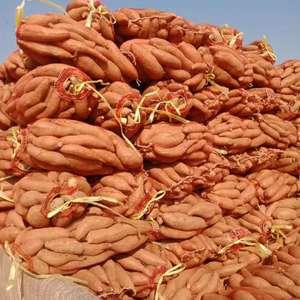 本红薯种植基地大量供应济薯二十六号,支持各种包装,沙土种...