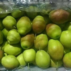 供应冷库红香酥梨价格2.6元筐子装,需要请速度来电质量保...