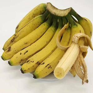 广西香蕉香甜滑糯,口感超级好