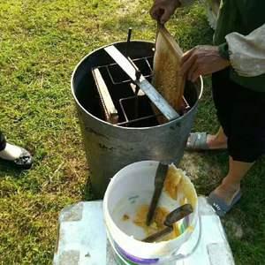 全国供应百花蜜,保质保量,自家在深山养殖的蜜蜂,多要价格...