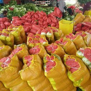 大棚新鲜大白菜 西葫芦种植产地批发,种植面积大,货源充足...