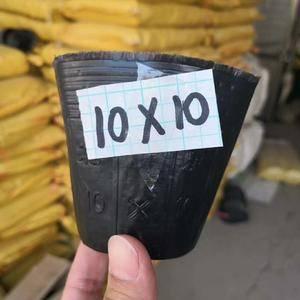 厂家直销柑橘育苗专用营养钵方口10×30和方口12×25...
