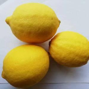 安岳柠檬,皮薄汁多,欢迎购买