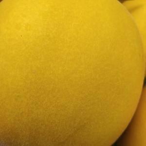 黄金瓜大量上市中。