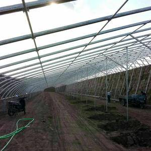 我们公司天津聚友信钢铁,主要承建春秋冷棚、日光暖棚、养殖...