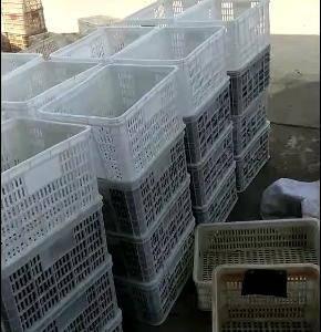 60万亩精养稻田养殖基地