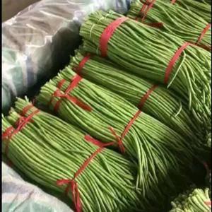 长豆角大量上市了13176070878大量供应恰好,货源充足...