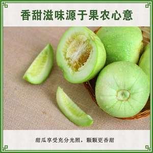 梨瓜产地/甜瓜/绿宝石瓜直销15587922221