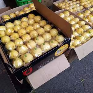 大量出售柠檬需要的联系我,可以随时供货