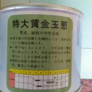 供应国产进口红黄紫皮洋葱种子,质量保证,包销产品1893...