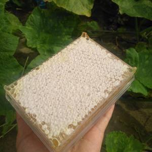 这是自己家养的蜂,都是纯天然绿色食品,目前有7000-8...