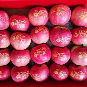 大量供应中秋节礼盒带字苹果,需要的联系158774806...