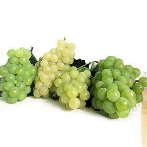 贵州张氏水晶葡萄