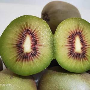 红阳红心猕猴桃精品果