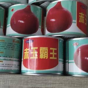日本进口赤玉类型洋葱种子,亩产10000-12000斤,...