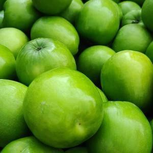 元谋大清枣现在已经大量上市,当地收购价4~4.5元一公斤...