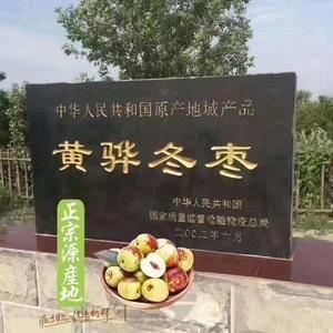 河北黄骅鲜冬枣,非沾化大荔冬枣 自家枣园,现摘现发。可...