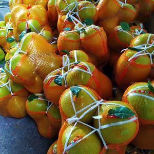 蜜柚产地大量热销,提供简包,精包。质优价廉。