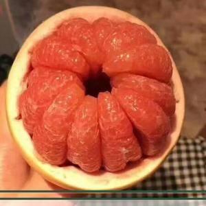 我们位于宜昌市郊区地处丘陵地带,现早熟蜜桔、蜜柚、脐橙、...
