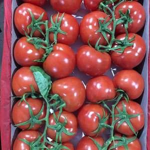 西红柿大批上市,大红,硬粉都有,货源充足。1340684...