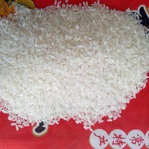 正宗五常稻花香大米,农民自产自销,这是稻花香新米。抛光的...