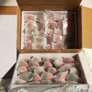 黔莓草莓大量上市口感好果子硬价格美丽有各种包装