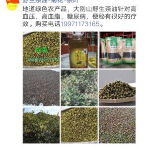 大别山野生茶油,纯绿色胎菊批发及零售。联系电话19971...
