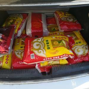 超级稻新大米现磨现卖20斤袋装包邮72小时发货