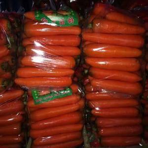 河南开封红萝卜打掉价了8分,需要的赶紧联系吧150378...