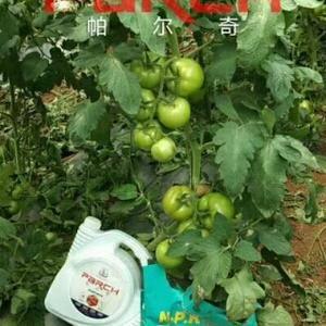帕尔奇氨基酸根补精华液,促根养根,以菌治菌,促进吸收,高...