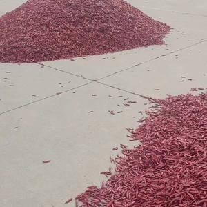本公司位于中国大蒜之乡-金乡县,主要从事大蒜、蒜薹、洋葱...