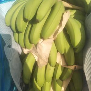 小黄:香蕉代办诚信为本,有看上香蕉的电话联系 1509...