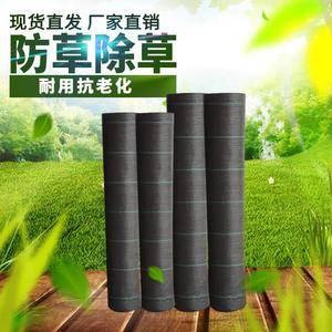 园艺地布防草布抗氧化透气保湿抑草控草 提高产量  厂家直...