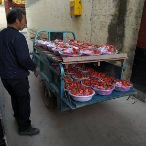 大量甜宝草莓上市,口感好,颜色足!13964146619