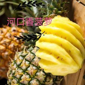 河口香甜菠萝