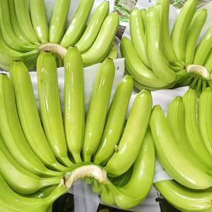 基地全年直供缅甸拉咱歪莫香蕉